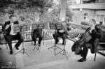 Amadeo Cvartet - tango,vals...muzica - Image 2