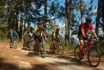 Inchirieri biciclete si role - Image 2